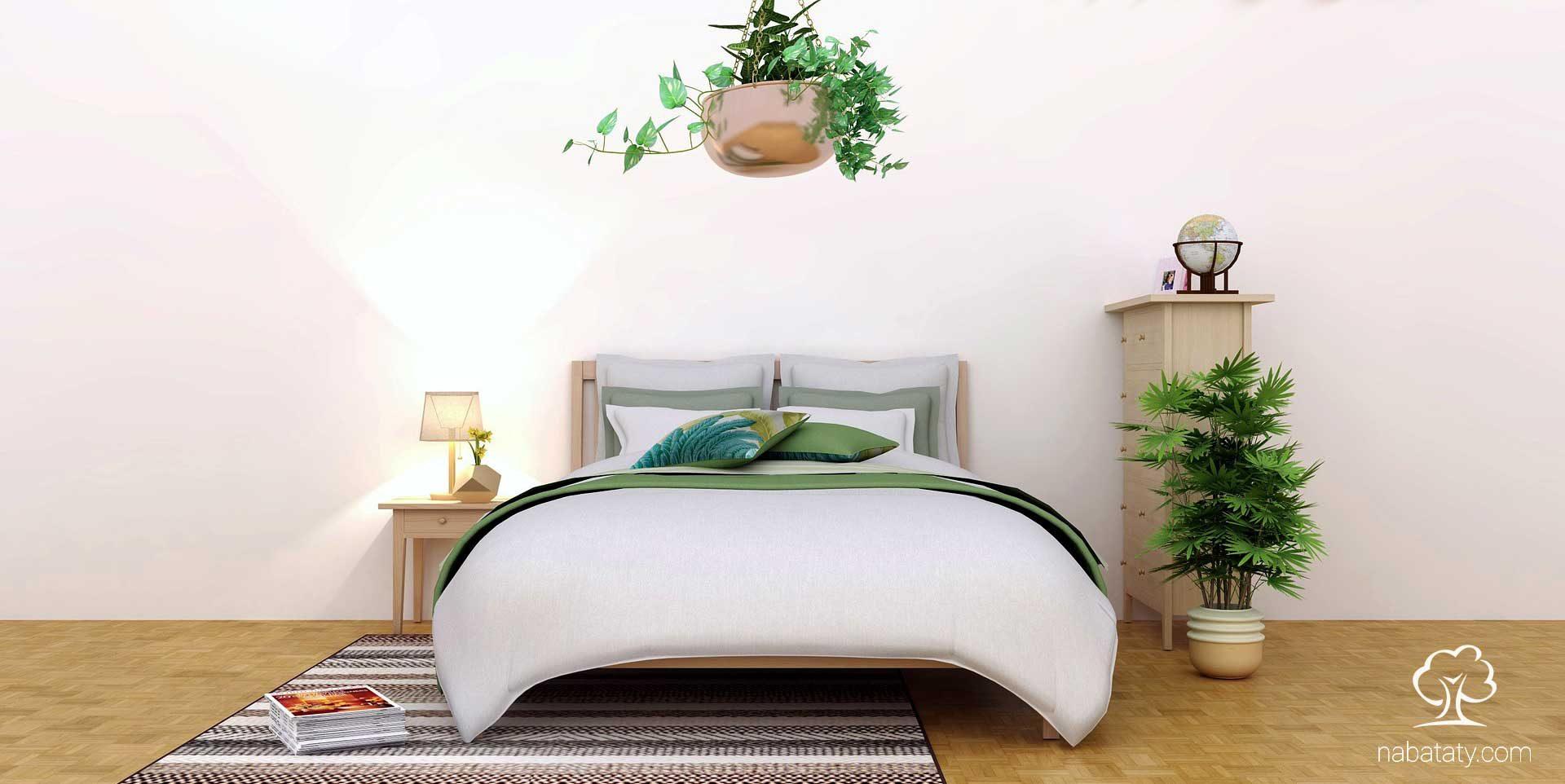 النباتات في غرف النوم وخطر الاختناق