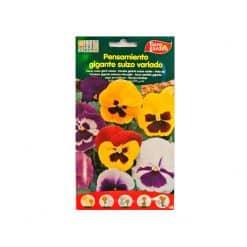 بذور زهرة الثالوث متنوعة