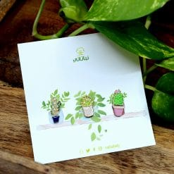 بروش نباتات صبار ازرق