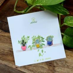 بروش نباتات صبار وردي
