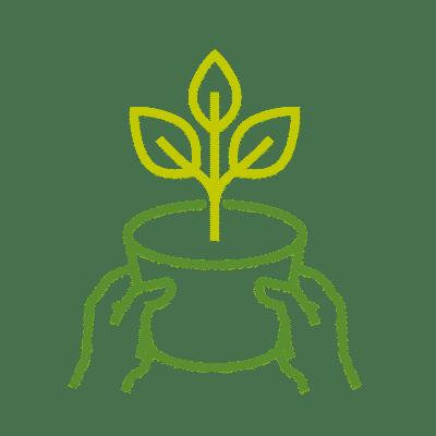 نباتات جديدة يوميا