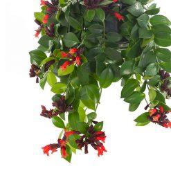 نبتة احمر الشفاه موناليزا
