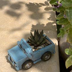 حوراء القصر في اصيص على شكل سيارة زرقاء