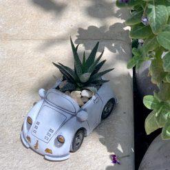 حوراء القصر في اصيص على شكل سيارة بيضاء